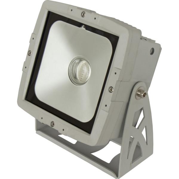 Projecteur LED 60W Cob-Wash 60TC BRITEQ